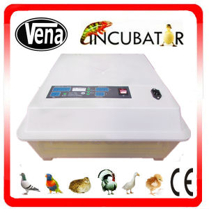 Newborn Automatic Egg Incubator Comtroller/Duck Egg Incubator and Hatcher pictures & photos