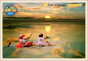 100% Clear Kayak pictures & photos