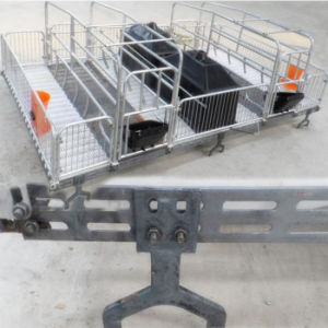 Pig Farming Galvanized Conservation Field Nursery Crates pictures & photos