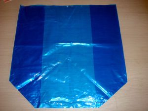 Blue Color LDPE Square Bottome Bag Inside Carton Packing for Seafoods pictures & photos