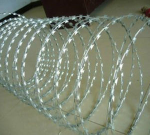 Razor Barbed Wire Mesh (TS-J38) pictures & photos