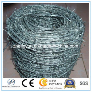 Building Materials Galvanize Barbed Wire Weight pictures & photos