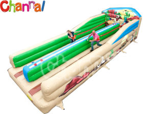 Inflatable Sport Game Bungee Run for Adults (Bb256) pictures & photos