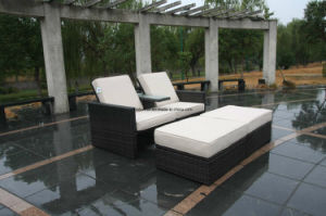Patio Furniture (FSS-1621)