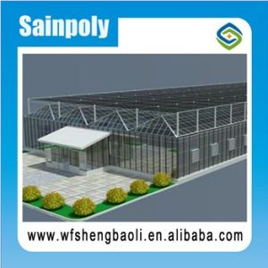 Sainpoly High Standard Transmissivity Glass Greenhouse for Potato Growing pictures & photos