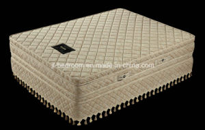 Massage Double Box Spring Top Class Mattress (WL041-A) pictures & photos