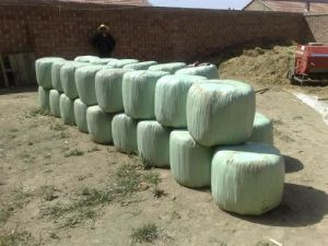 Light Green Silage Film for New Zealand Market pictures & photos