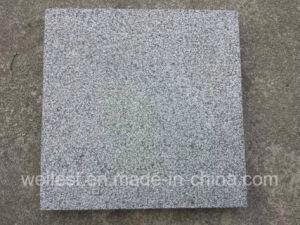 G654 Sesame Black Padang Dark Grey Granite Bush Hammered Tile pictures & photos