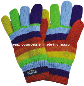 Knitted Gloves Sh12-2g013 pictures & photos
