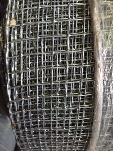 8 Gauge Welded Wire Mesh From Guangzhou Supllier pictures & photos