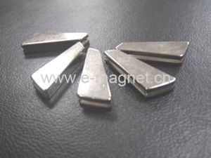 Erose Sintered NdFeB Rare Earth Magnet pictures & photos
