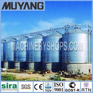 Wheat Storage Silo System