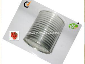 850g Tomato Paste 100% Pure