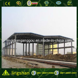 Q345 Steel Structure Shed with SGS Certification (LS-SS-105) pictures & photos
