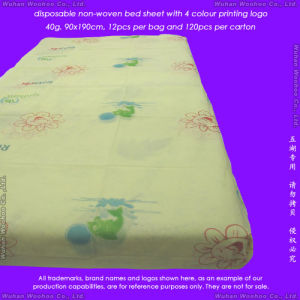 Disposable Non-Woven Mattress Cover pictures & photos