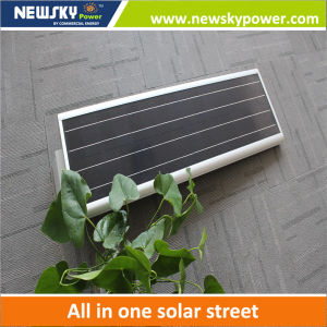 Newsky Power 12W Solar LED Lighting pictures & photos