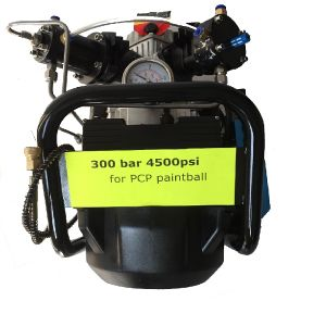 4500psi Mini and Cheaper High Pressure Air Compressor pictures & photos