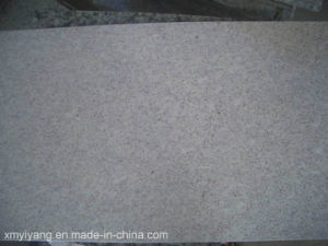 China Pearl White/Alb Argint Granite Slab for Countertops pictures & photos