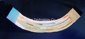 Flexible LED Curtain P30, Soft LED Display (FLC-1000) /Stage Backdrop pictures & photos