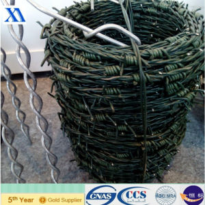 Green Plastic Coated Barbed Wire (XA-BW6) pictures & photos
