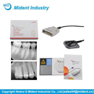 Korean Original USB Rvg Digital Dental X-ray Sensor pictures & photos