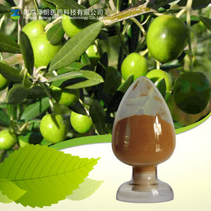 Natural 40% Oleuropein Olive Leaf Extract Powder pictures & photos