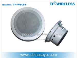 Background Music Wireless Mounted Ceiling Speaker pictures & photos