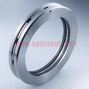 Burgmann CSE Replacement (dry gas seal, Barrier seals, Compressor seals) pictures & photos