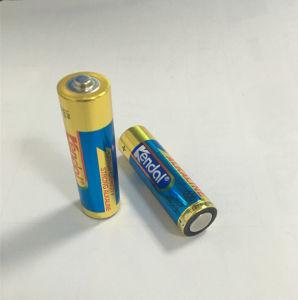 LR6 AA Alkaline Batteries pictures & photos