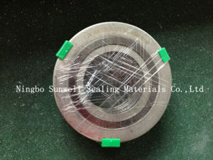 Spiral Wound Gasket (316L. 316L/FG. 316L) Sunwell pictures & photos