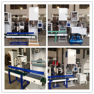 High Quality Animal Feed Pellet Packing Machine Dcs-10A pictures & photos