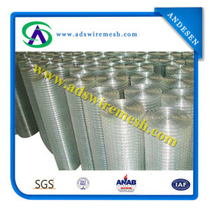 Powder Coated Wire Mesh Panel / Decorative Wire Mesh / Welded Wire Mesh pictures & photos