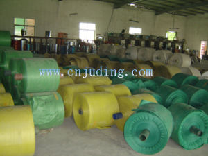 Woven PP Fabric in Roll