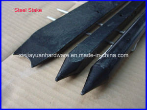 Black Painted Steel Nail Stakes for Construction pictures & photos