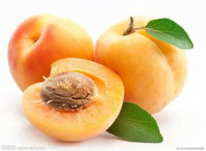 High Quality Apricot Kernel Extract Vitamin B17 pictures & photos