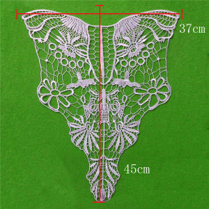 Garment Accessories 100 Polyester Lace Collar (cn31) pictures & photos