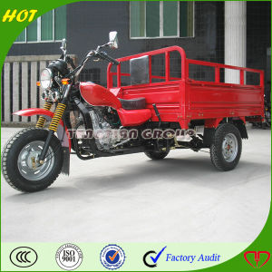 High Quality Chongqing Adult Pedal Trike pictures & photos