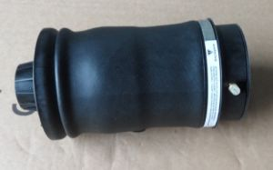 Front Right Air Spring OE 4e06160 40af for Audi A8 pictures & photos