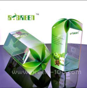 Plastic Gift Box for Sugar/Fruit