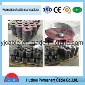 Hot PVC Australia Standard Electric Cable pictures & photos