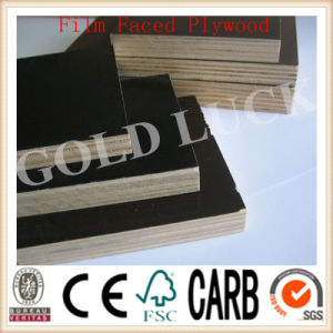 Qingdao Gold Luck Laminated Film Faced Plywood Board (QDGL150115) pictures & photos