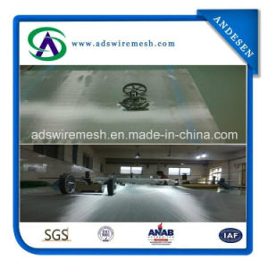 25 Micron 304 Stainless Steel Wire Mesh, Stainless Steel Mesh pictures & photos
