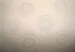 Cutting Flower Chiffen Fabric pictures & photos