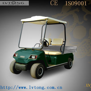 Mini 2 Person Electric Truck with CE Certification pictures & photos