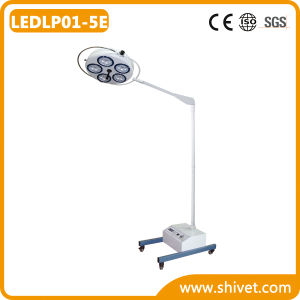 Veterinary Examination Headlight/Operating Lamp (LEDLP01-5E) pictures & photos