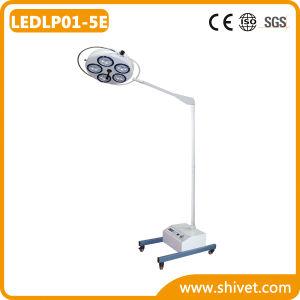 Veterinary Examination Headlight/Operating Lamp (LEDLP01-5E) pictures & photos