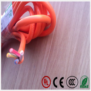 Round Cable for Electrical Apparatus 60227 IEC53 Rvv pictures & photos