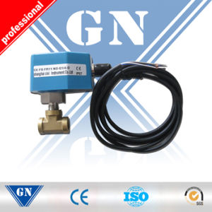 Hot Water Flow Switch with Single Control Switch pictures & photos