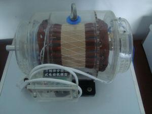 Wire Wound Motor, Teaching Utensil, Demonstrational Model, 3D Model Industrial, Industrial Organization Model