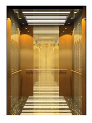 Elevator Passenger Lift Elevator Ti-Gold Luxry pictures & photos